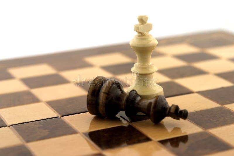 Ganador del ajedrez fotografía de archivo