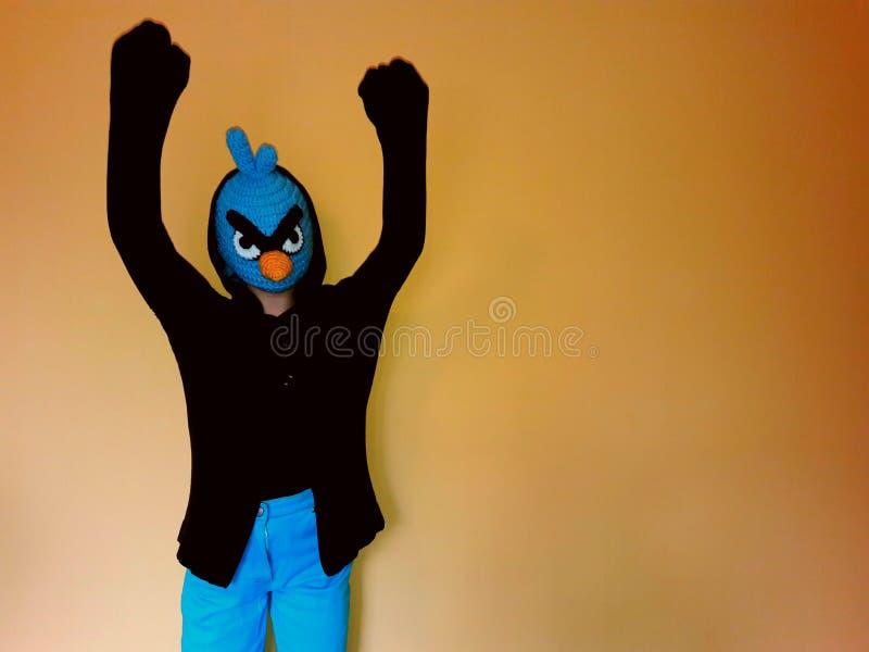 Ganador enojado azul del boxeo del pájaro imagenes de archivo