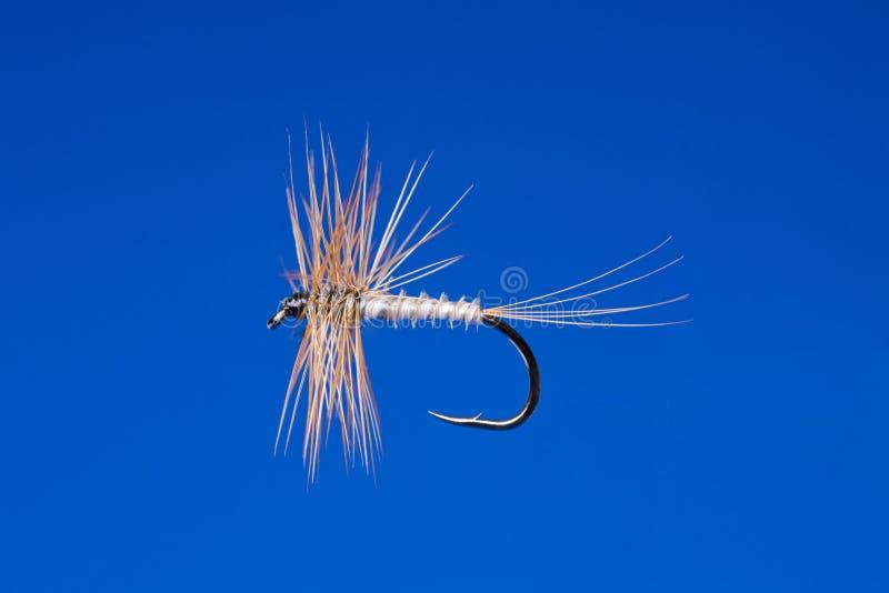 Gancho de pesca da mosca fotografia de stock