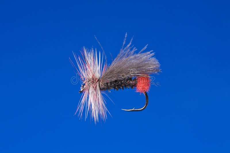 Gancho de pesca da mosca imagem de stock