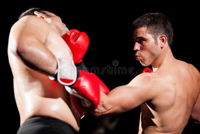Gancho del boxeo durante una lucha imagen de archivo