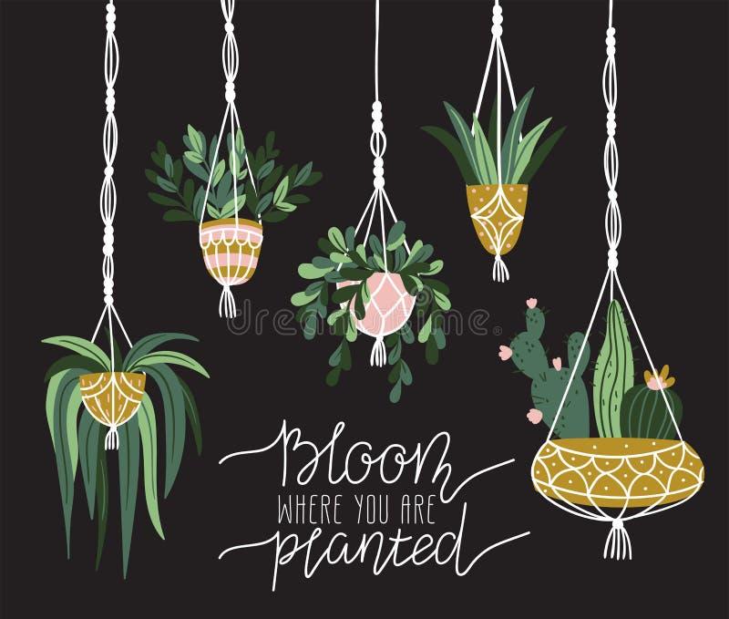 Ganchos da planta do macramê no interior escandinavo Projeto à moda dos elementos do vetor A flor do ` onde está você é plantado  ilustração stock