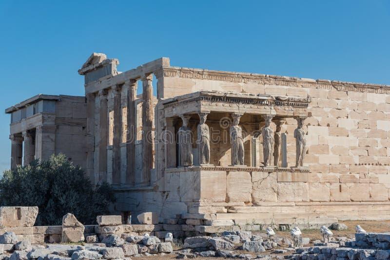 Ganeczek kariatydy w Erechtheion starożytny grek t zdjęcie stock