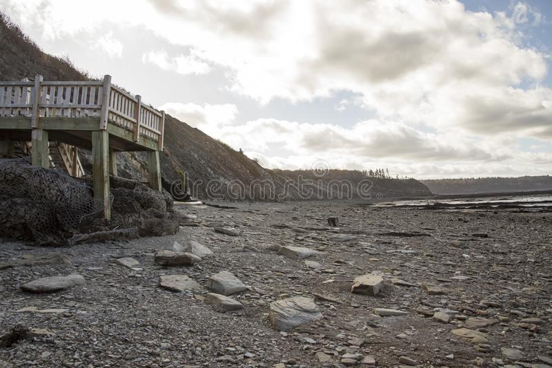 Gang aan klippen at low tide, de Fossiele Klippen van Joggins, Nova Scotia, royalty-vrije stock foto's