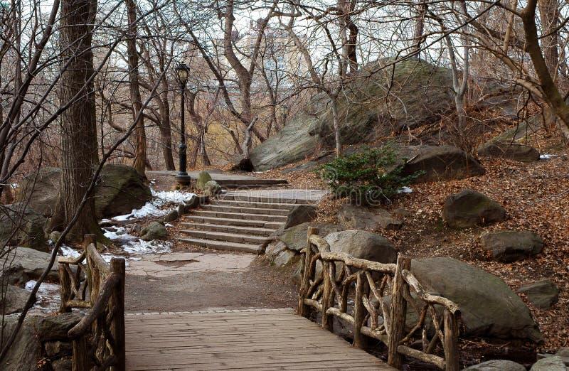 Gang in Central Park royalty-vrije stock foto