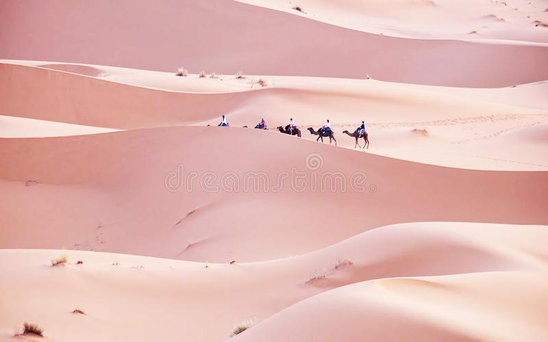 Gang in de ERGwoestijn in Marokko  royalty-vrije stock fotografie
