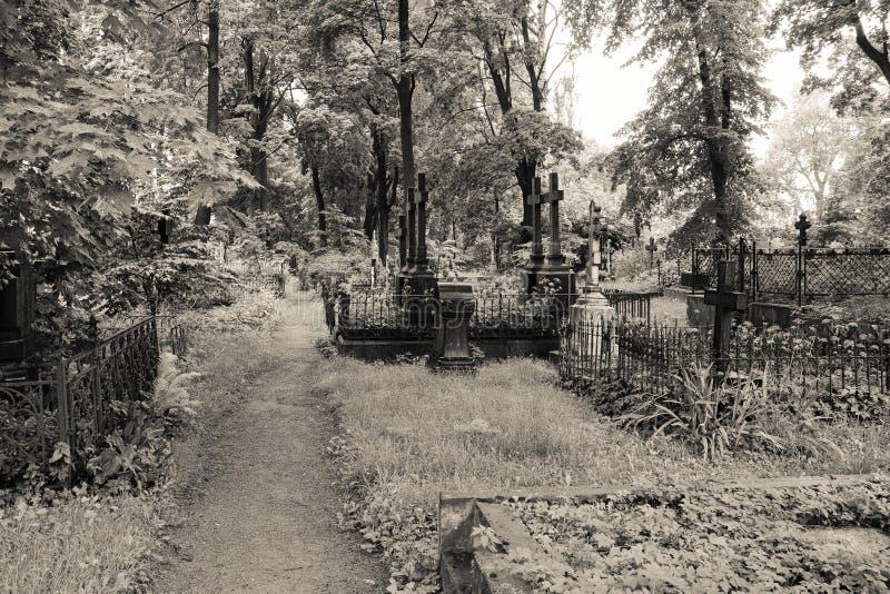Gang door verlaten begraafplaats tussen graven en graven stock foto