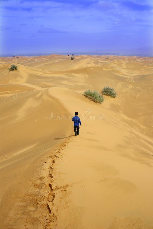 Gang eenzaam op woestijn stock afbeeldingen