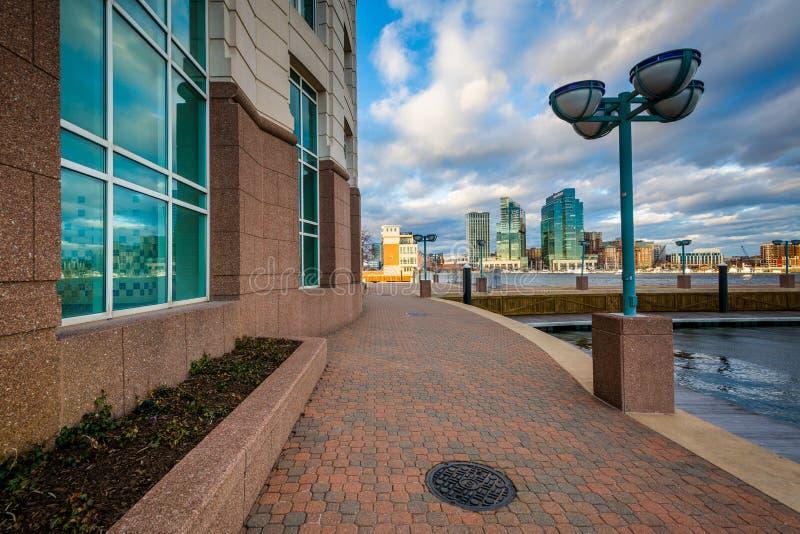 Gang en de Harborview-Toren, in Baltimore, Maryland stock afbeeldingen