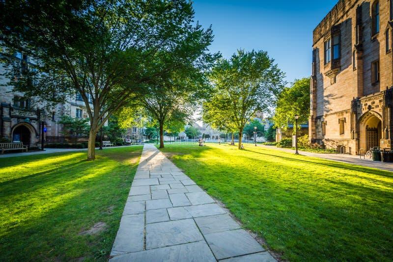 Gang en gebouwen op de campus van Yale University, in Nieuw H royalty-vrije stock foto