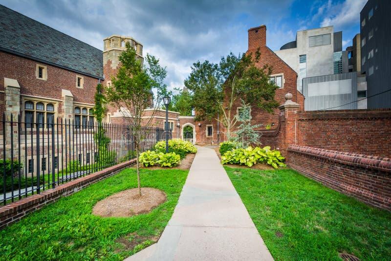 Gang en gebouwen in Yale University, in New Haven, Connecti stock afbeeldingen