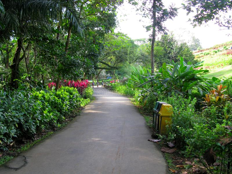 Gang en Kalesa-Route, La Mesa Ecopark, Quezon-Stad, Filippijnen stock afbeelding