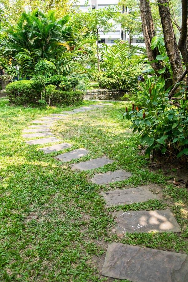 Gang en wegbaksteen in tuin stock fotografie