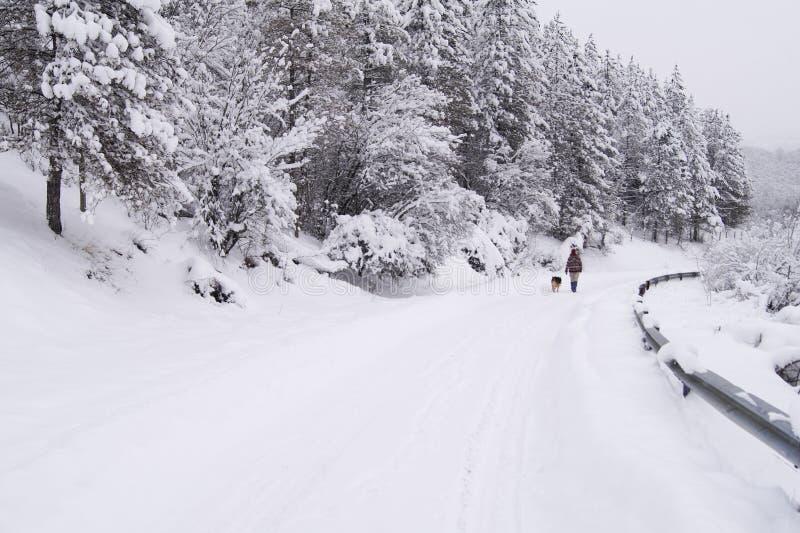 Gang op de sneeuwweg stock afbeeldingen