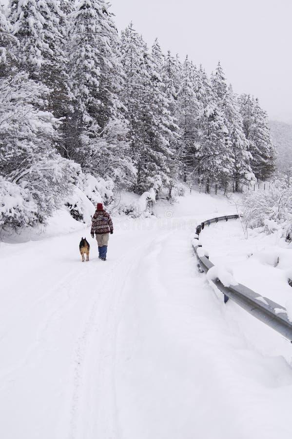 Gang op de sneeuwweg royalty-vrije stock foto's