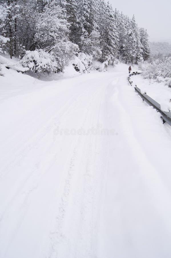 Gang op de sneeuwweg stock fotografie
