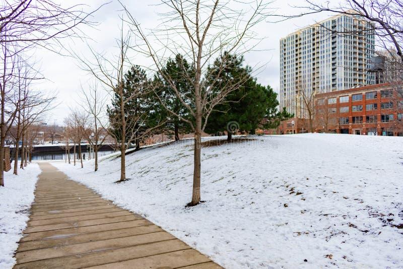 Gang in Ward Park in Chicago tijdens de Winter met Sneeuw royalty-vrije stock fotografie