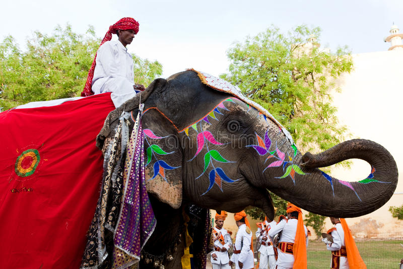 Gangaur festival-Jaipur stock fotografie