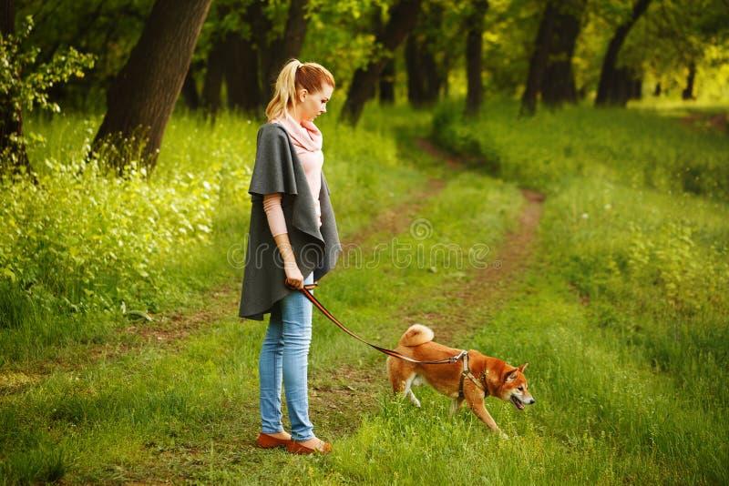 Gangmeisje en hond Shiba Inu royalty-vrije stock foto