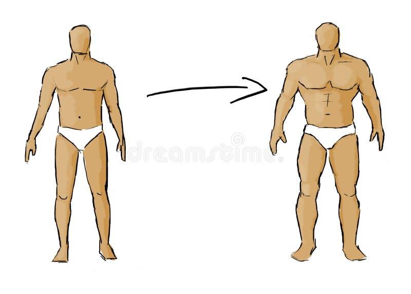 Ganho do músculo ilustração stock
