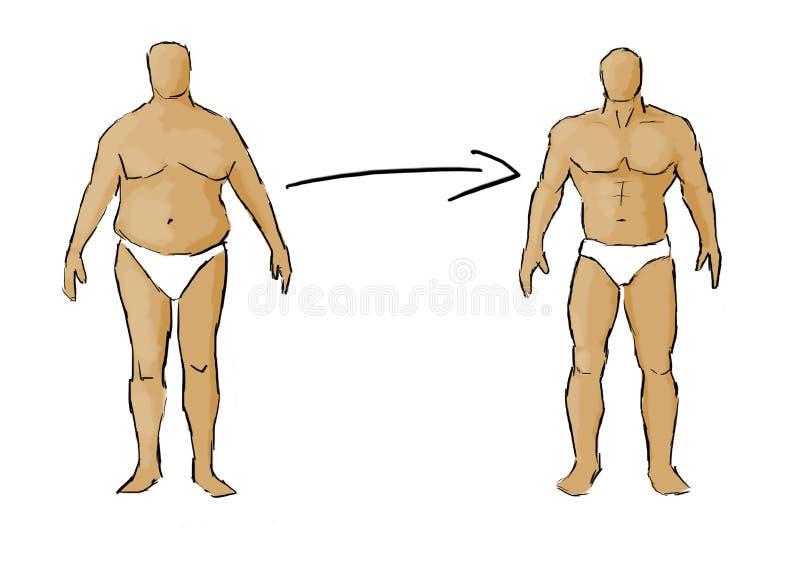 Ganho do músculo - gordura a caber ilustração stock