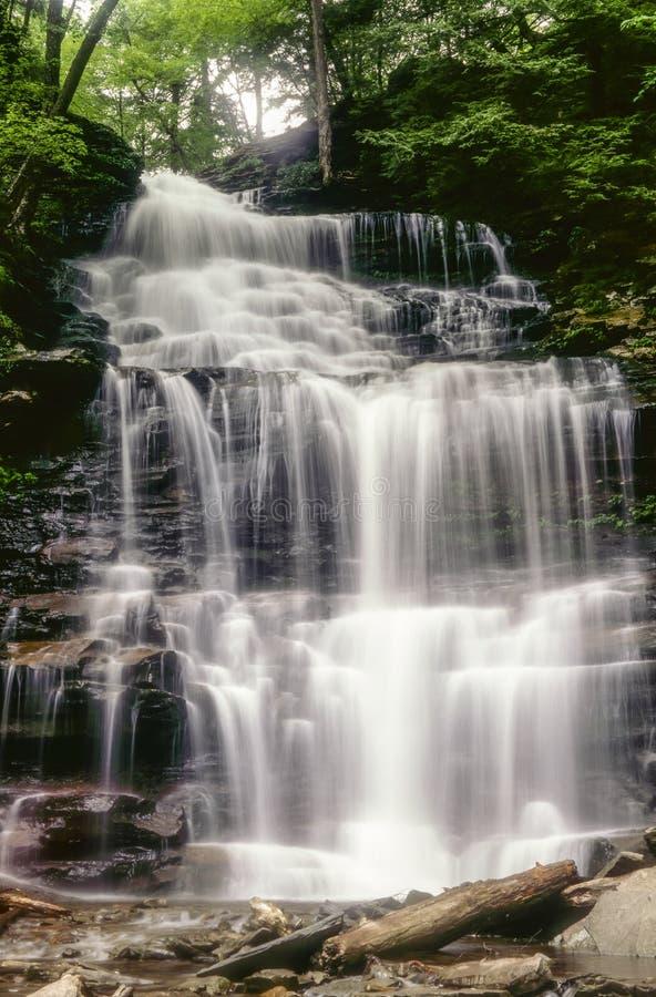 Download Ganoga Falls in early May stock image. Image of falls - 23025123