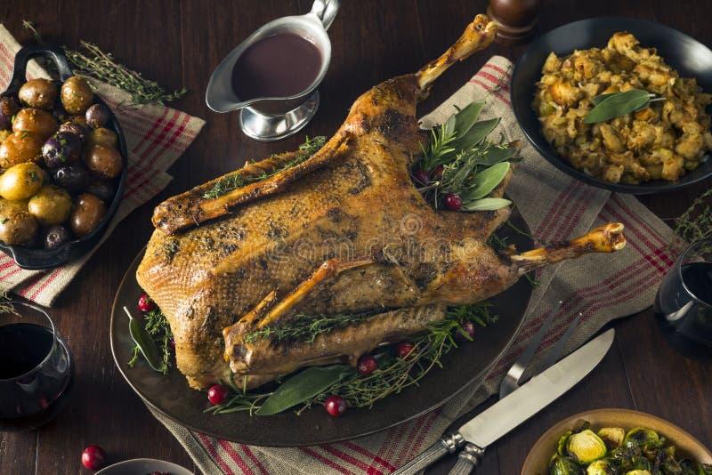 Ganso asado festivo hecho en casa de la Navidad imagenes de archivo