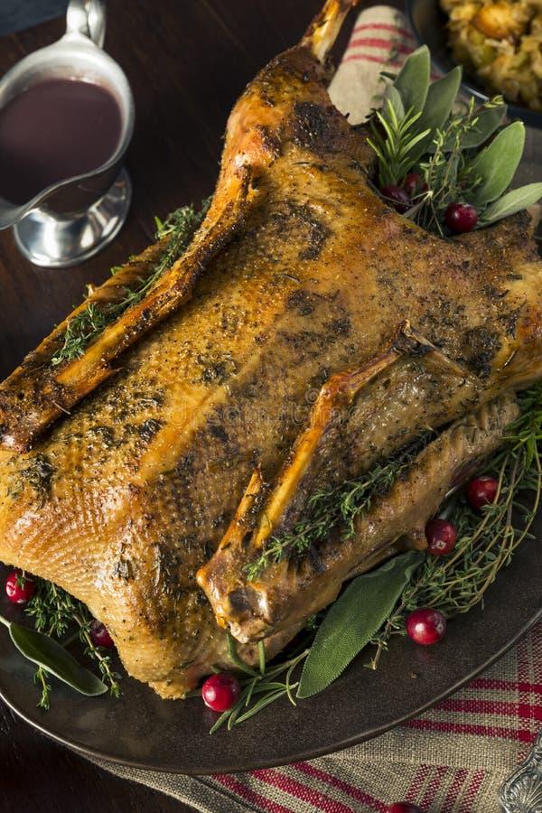 Ganso asado festivo hecho en casa de la Navidad fotografía de archivo