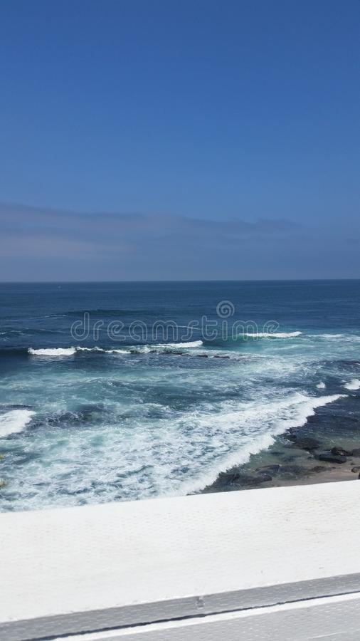 Ganso no oceano onde as marés dobram fotos de stock