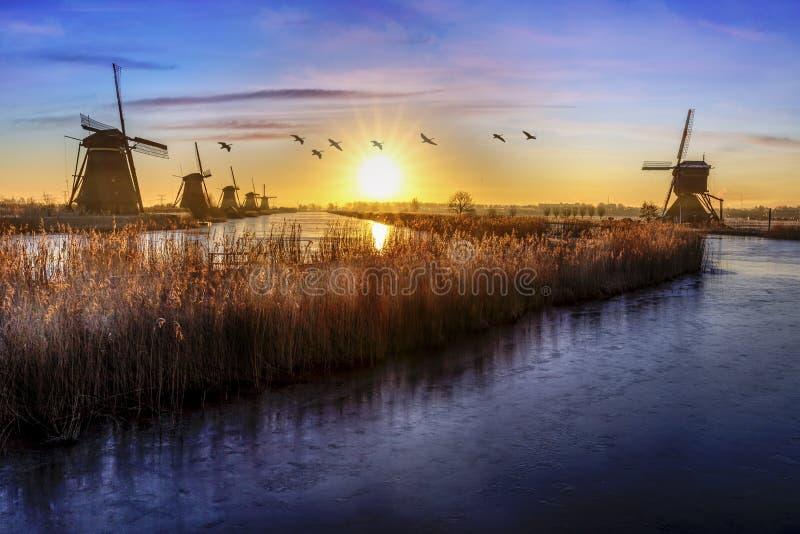 Gansos que vuelan sobre salida del sol en la alineación congelada de los molinoes de viento imagenes de archivo