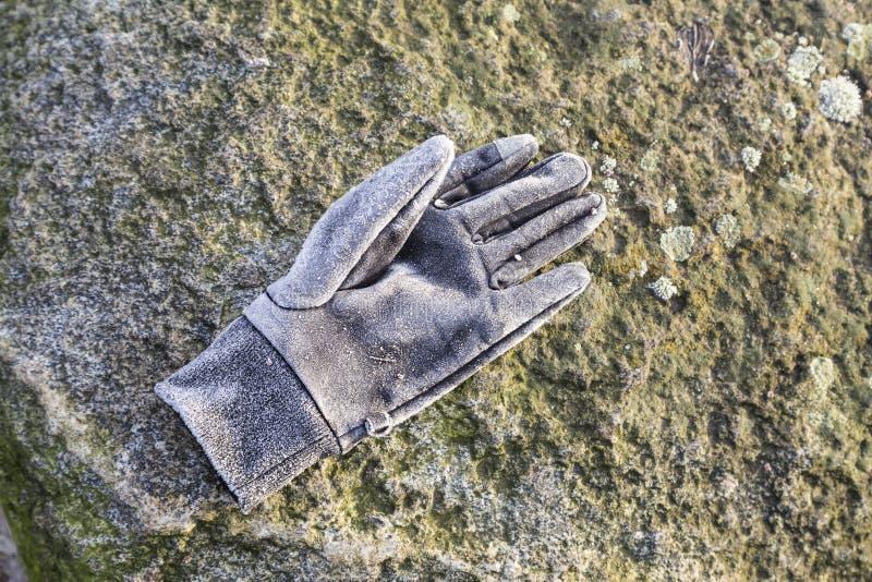 Gant congelé en hiver à l'herbe photos stock