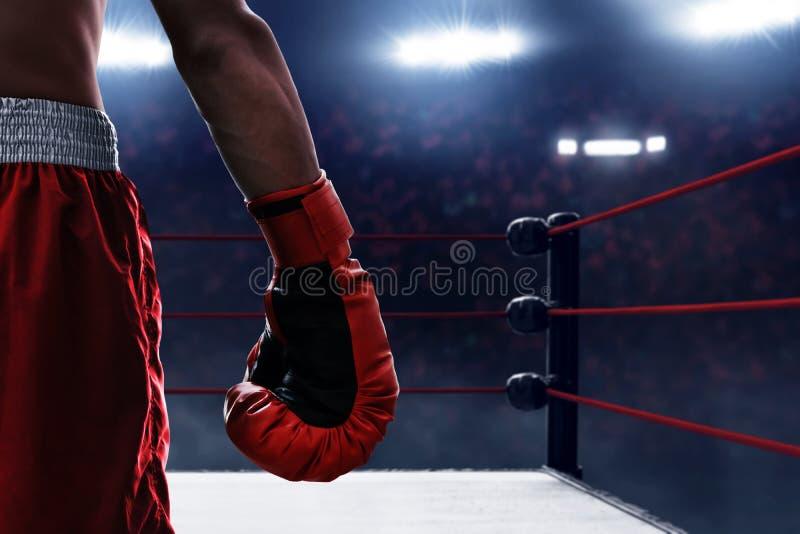 Gant de boxe rouge sur les anneaux photographie stock libre de droits