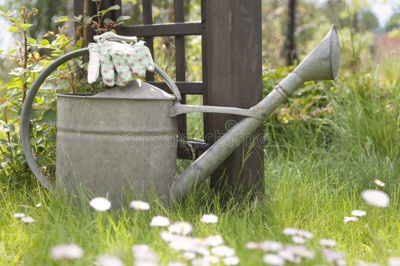 Gants de bidon et de jardin d'arrosage sur la pelouse photographie stock libre de droits