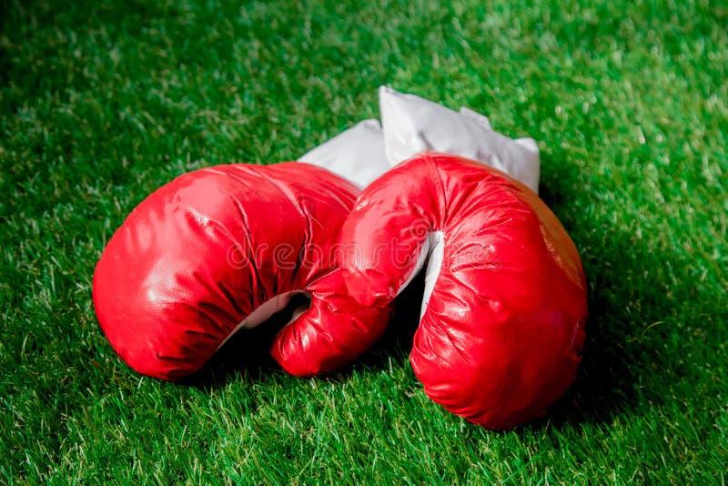 Gants de boxe rouges sur l'herbe verte image libre de droits