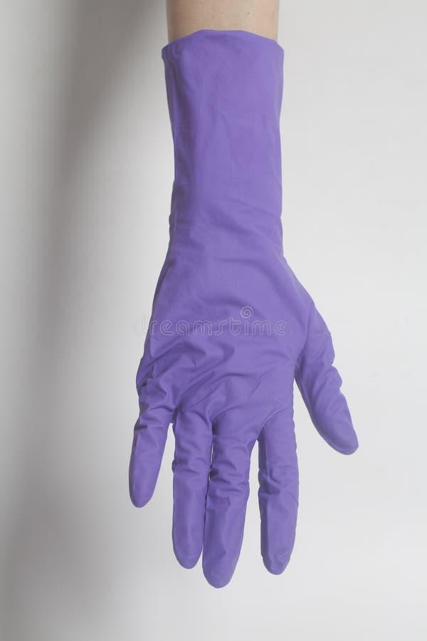 Gants de latex pour nettoyer sur la main femelle images libres de droits