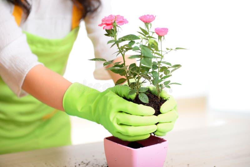 Gants en caoutchouc de nettoyage d'utilisation de jardin de gant de vaisselle en caoutchouc de cuisine de ménage image libre de droits