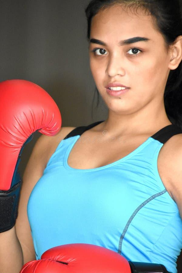 Gants mignons de Filipina Female Athlete Wearing Boxing photo stock