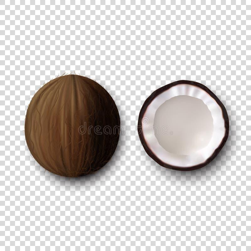 Ganz-und Hälfte-Kokosnuss-Ikonen-Satz-Nahaufnahme des Vektor-3d realistische lokalisiert auf transparentem Hintergrund Designscha lizenzfreie abbildung