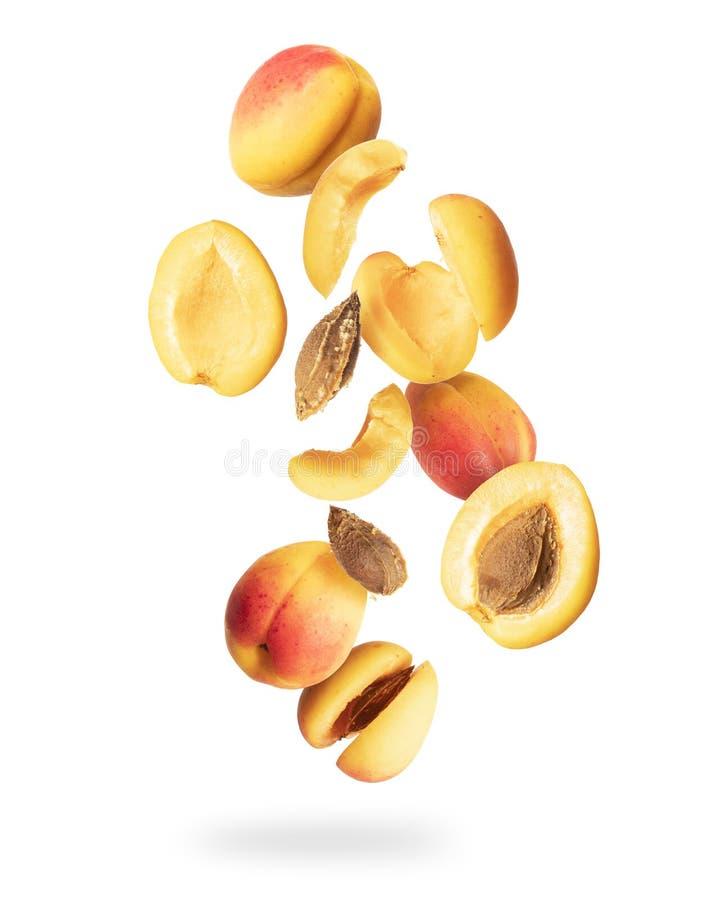 Ganz und schnitt frische Aprikosen in der Luft, lokalisiert auf einem weißen Hintergrund lizenzfreies stockbild