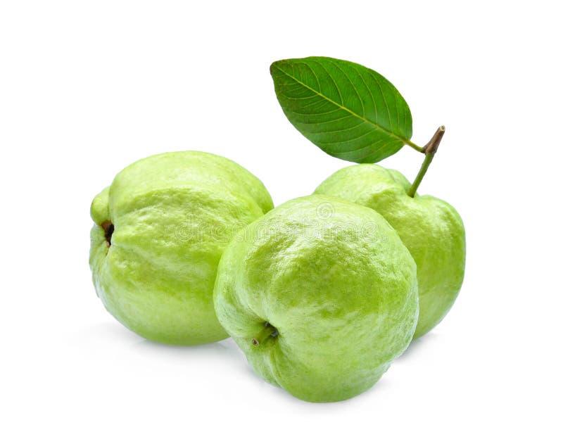Ganze drei Guajava-Frucht mit dem grünen Blatt lokalisiert auf Weiß stockfotos