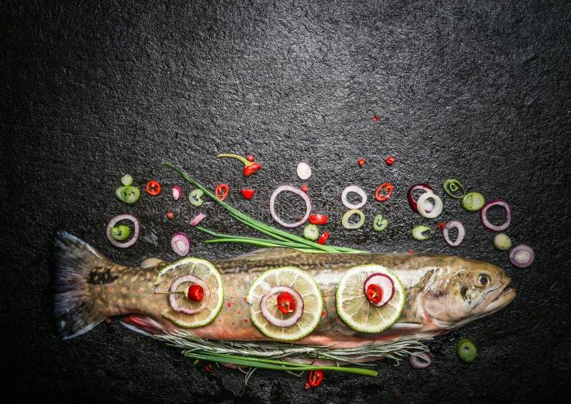 Ganze Forelle mit Kräutern, Gewürzen und Gewürz für Fischgerichte kochend auf dunklem Hintergrund lizenzfreies stockfoto