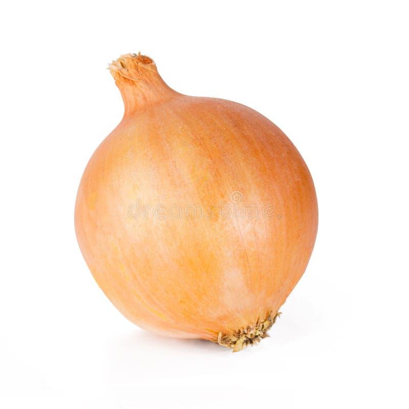 Ganze frische Birnen eine der Zwiebel lokalisiert auf einem weißen Hintergrund lizenzfreies stockbild