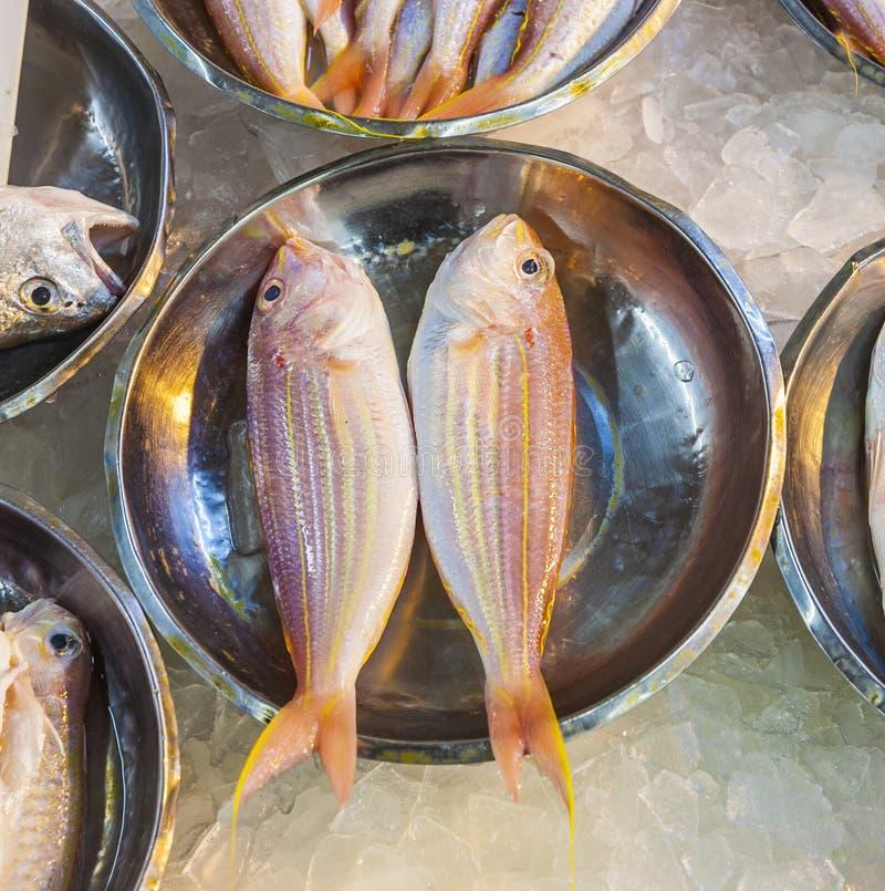 Ganze frische Fische angeboten stockfotografie