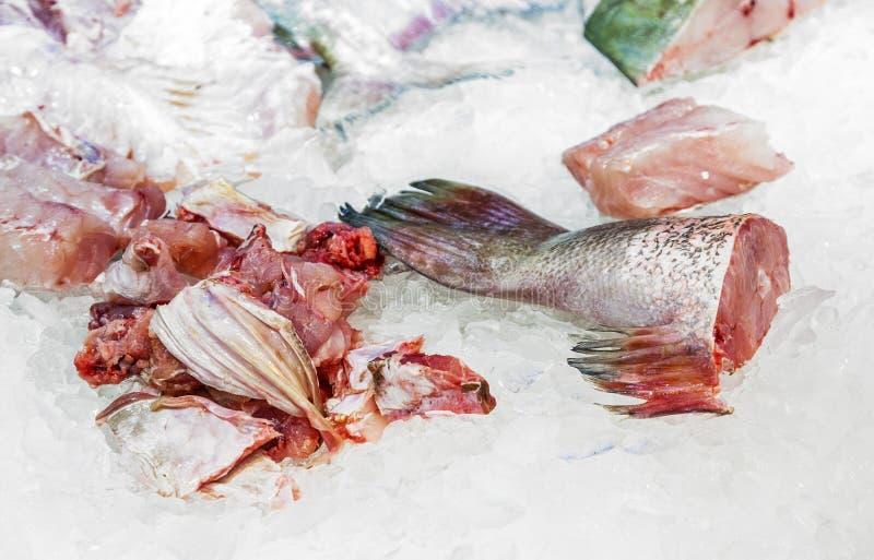 Ganze frische Fische angeboten lizenzfreie stockfotografie