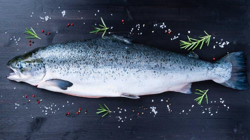 ganze frische rohe große Lachsfische mit Gewürz, Salz, Pfeffer und lizenzfreie stockbilder