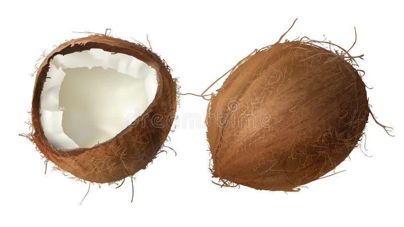 Ganze und halbe defekte Coconuß stock abbildung
