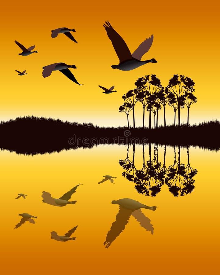 Ganzen die laag over water vliegen stock illustratie