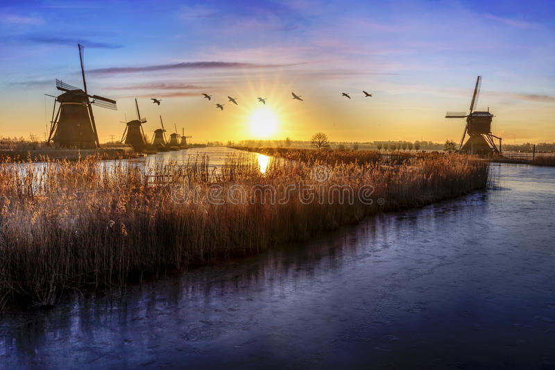 Ganzen die over zonsopgang op de bevroren windmolensgroepering vliegen stock afbeeldingen