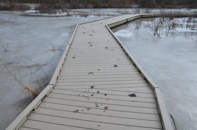 Ganzenachterschip op houten promenade met bevroren ijs stock afbeelding