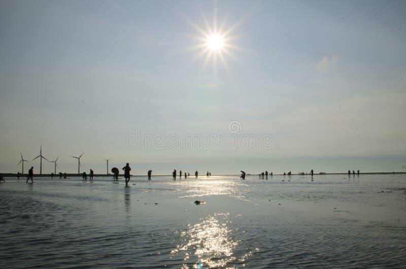 Gaomei-Sumpfgebiete stockbilder